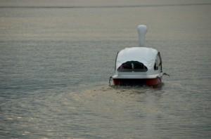 スワンボート