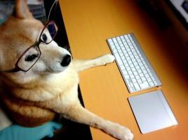 柴犬 iMac